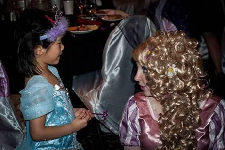 princess planning 1