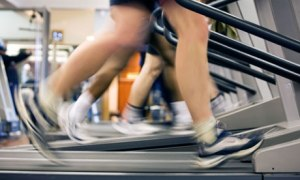 Treadmills in a gym